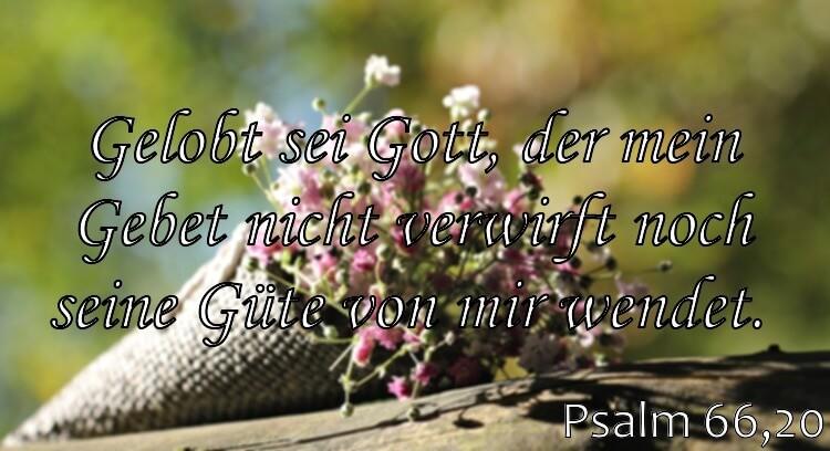 Wochenspruch 21 / 2017: Psalm 66,20: Gelobt sei Gott, der mein Gebet nicht verwirft noch seine Güte von mir wendet.