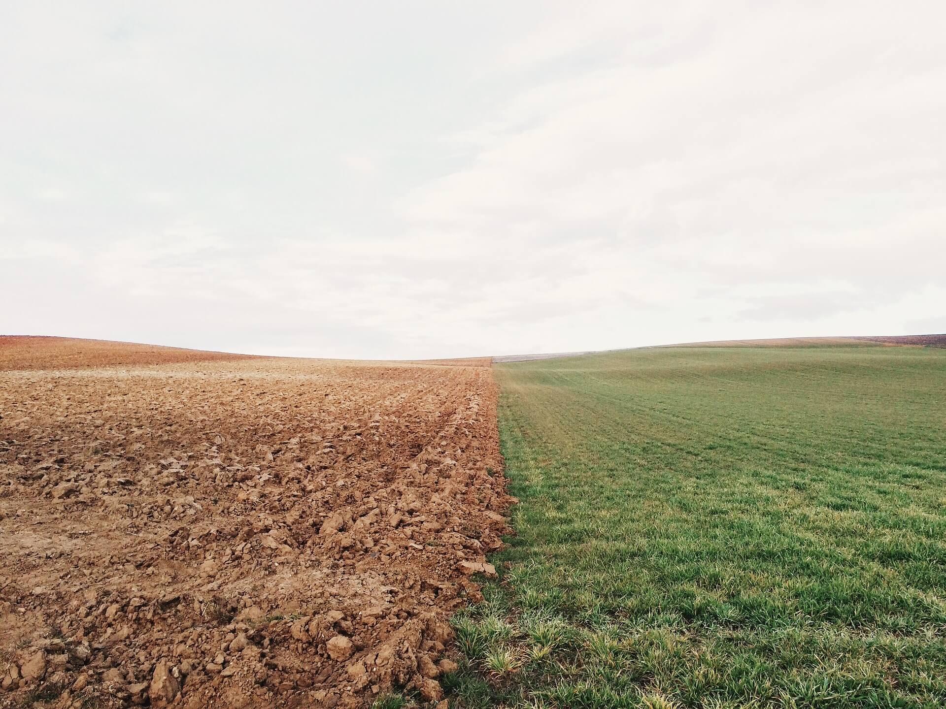 Gott geht mit uns an letzte Grenzen. Bild einer Ackergrenze