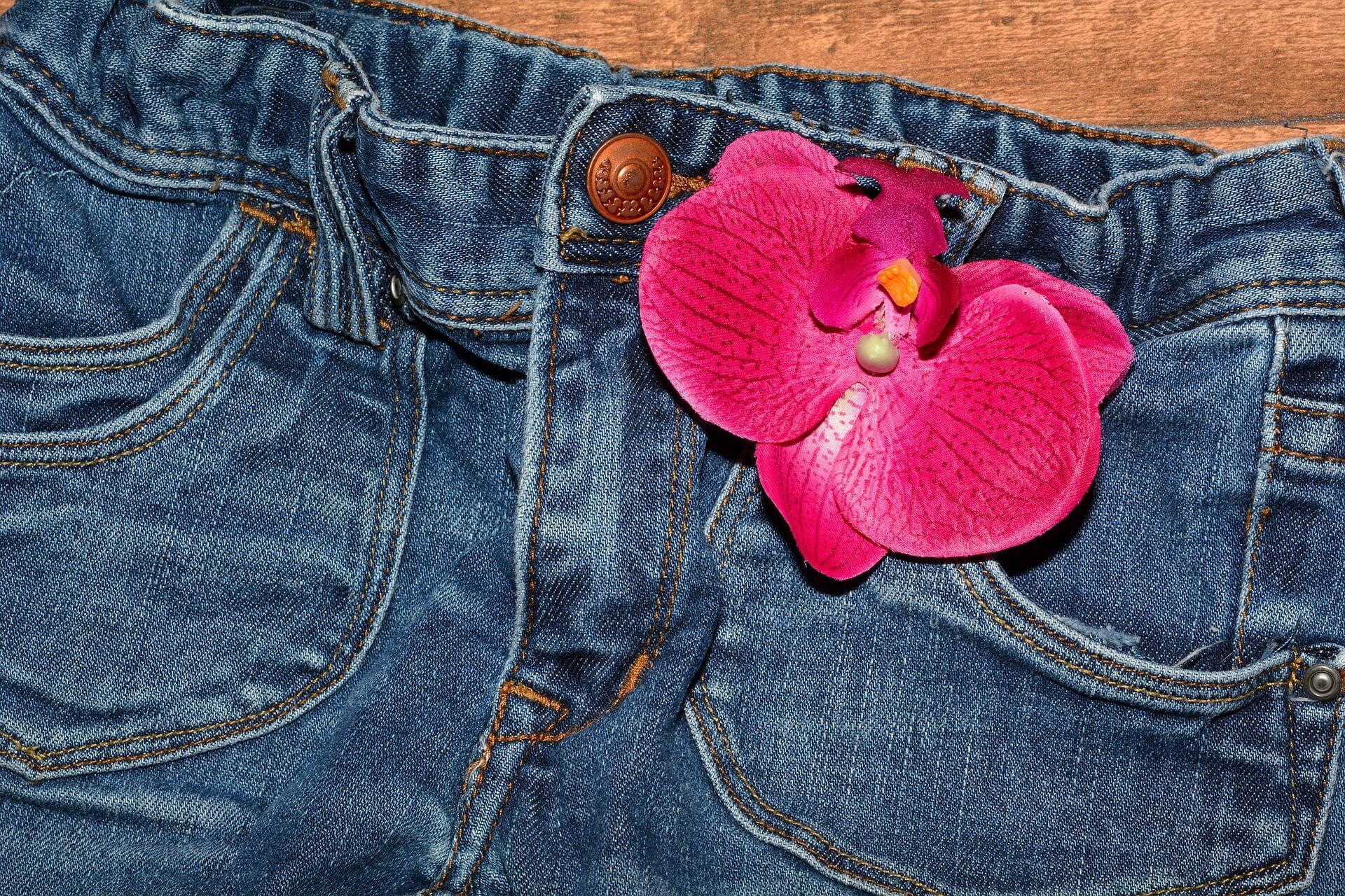 Hose mit Lilie, Symboolbild zum Tag der verlorenen Socke