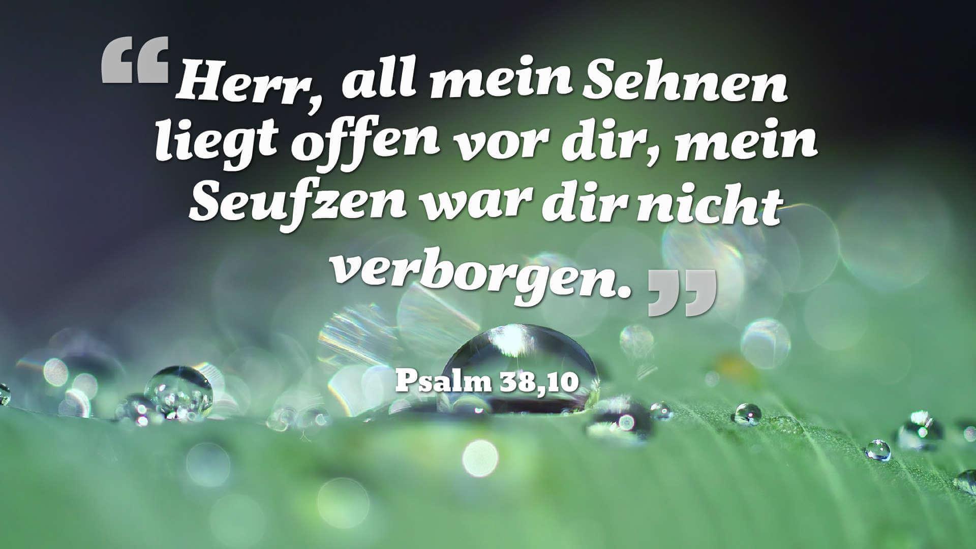 Herr, all mein Sehnen liegt offen vor dir, mein Seufzen war dir nicht verborgen. - Psalm 38,10